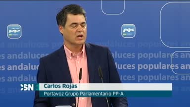El PP-A critica la actitud del PSOE ante Alaya