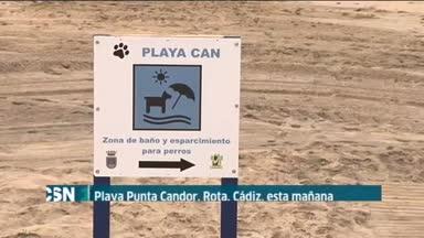 Playa para perros en Rota