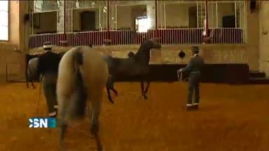 Feria del caballo de C�rdoba