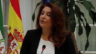 Desciende la criminalidad en Andaluc�a
