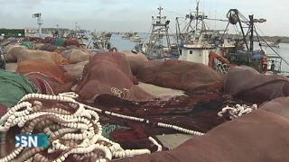 Afectados por la prohibici�n de la pesca de sardinas