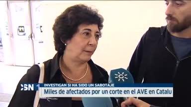 Sin AVE en Catalu�a por cortes de cable