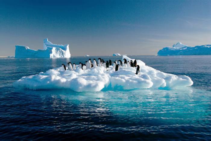 Comienza la Cumbre del Cambio Clim�tico