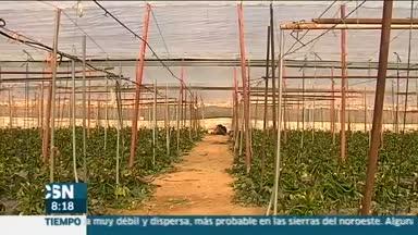 Rebaja fiscal para los agricultores