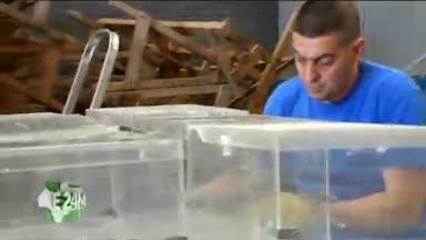 12.000 urnas est�n ya listas en Andaluc�a
