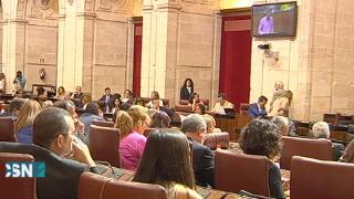 Primer pleno de la nueva legislatura