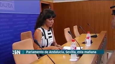 Primer pleno Parlamento