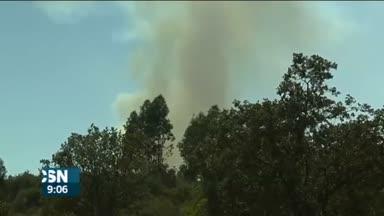 Controlados los incendios en Andaluc�a