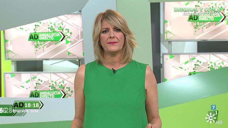 Televisión - Andalucía Directo